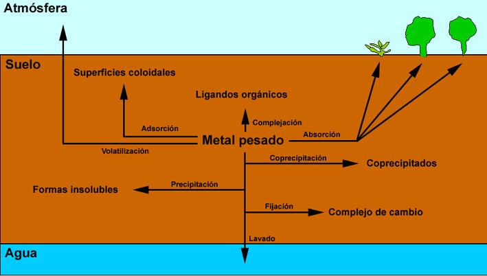 Gcs l4 contaminaci n del suelo contaminantes espec ficos for Que elementos conforman el suelo